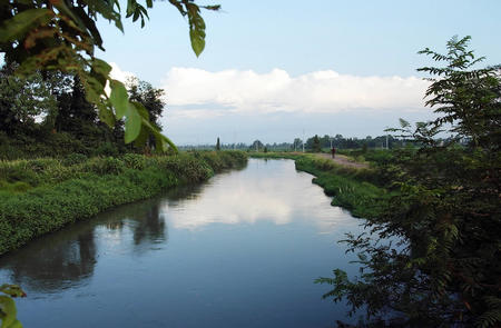 国内 我国部分地区出现罕见高温天气 图片新闻    江西省抚州市临川区