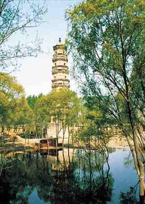 位于故城县饶阳店村东.饶阳店原有一座很大的寺院,叫庆林寺,该图片