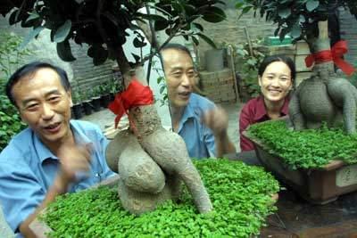 方男人人体艺术_正面像男人背面像女人 人体花卉亮相北京花展(图)