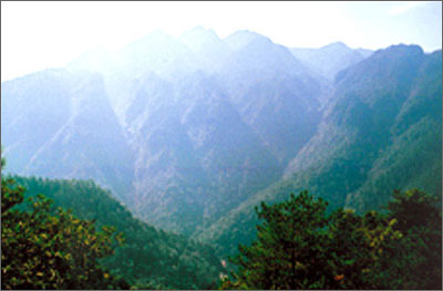 主峰景区是井冈山风景名胜区中最大的,面积5050公顷,有游览点百余处