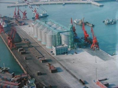 人民网青岛12月30日电记者宋学春报道:今天,青岛港一、二码头连体改造暨散粮储罐工程正式投产,一举成为沿黄流域最大的粮食接卸基地。这是青岛港在新世纪第一年,应对入世,再造核心竞争力,加快北方国际航运中心建设的重大举措。   世纪之交,面对我国即将加入WTO,青岛港敏锐地预测到粮食货种进出口贸易量必然迅速增长。为此,青岛超前决策、超前行动,下大决心,将百年的一、二码头连为一体,在此基础上兴建散粮储罐工程,进一步完善港口装卸功能,适应散粮船舶日趋大型化、泊位深水化、装卸自动化的需要,实现装卸生产专业化、集约化