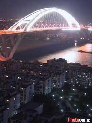 欧美美女光光露阴道大胆囹�a_组图:迷人夜景-上海卢浦大桥景观照明工程竣工