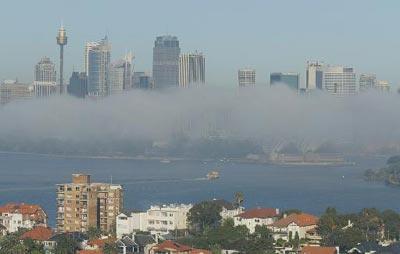 组图:澳大利亚悉尼出现大雾天气 交通受到影响