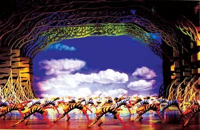 中国梦之声斑马下载_中国惟一原创大型舞剧《野斑马》:天鹅湖+狮子王
