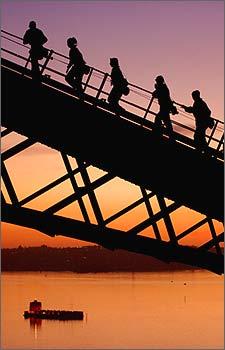 利亚悉尼港湾的大拱桥,欣赏晨曦中的美丽景观.-如梦如幻的悉尼晨