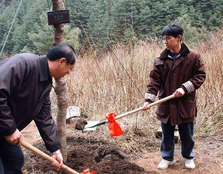 李昌镐/1月15日,韩国围棋国手李昌镐九段(右)在苍山植树。
