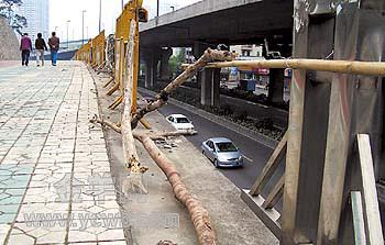 图:人行道与机动车道有七八米的落差,几根大树枝充当临时护栏 许悦