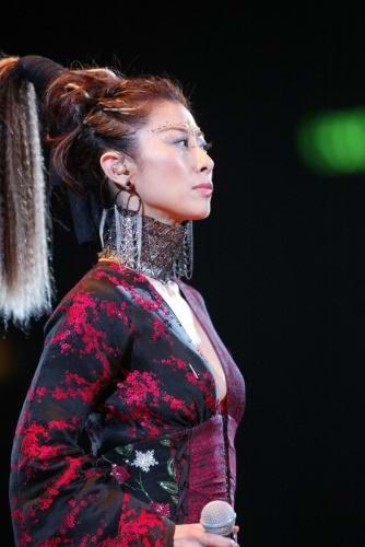 图文:香港著名歌星叶倩文举行演唱会-(14)图片