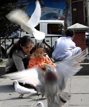 图文:一对母女在哈尔滨索菲亚教堂广场喂鸽子