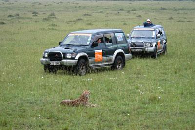 肯尼亚野生动物园--豹与车-搜狐网旅游频道