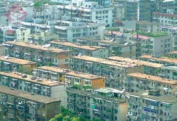 首府绿化委员会办公室负责人表示,随着城市建设的发展,诸如热岛效应