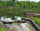 沱江水质污染严峻