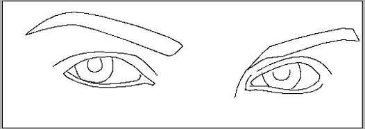 用钢笔工具画出眼睛和眉毛的