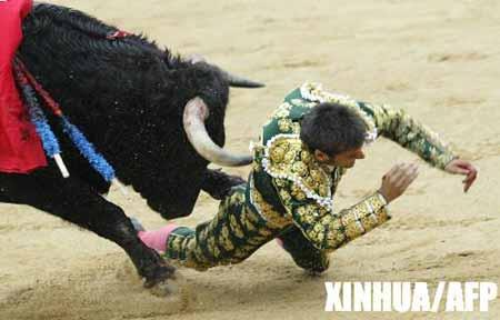 图文:西班牙斗牛