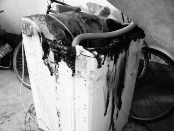 洗衣机自燃祸首疑是电源(图)