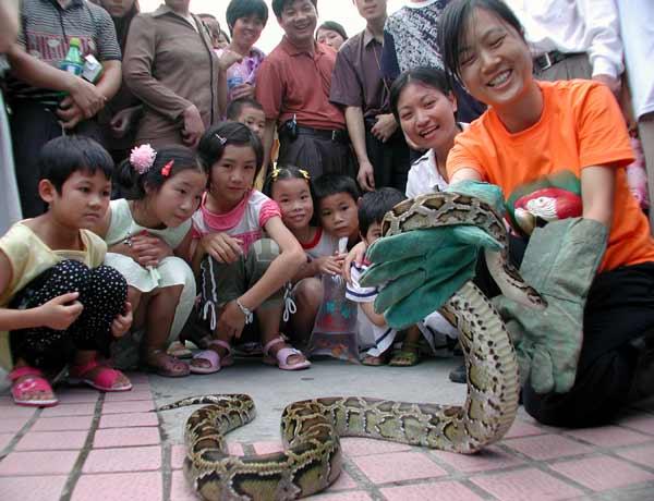 生送到广州动物园蛇馆