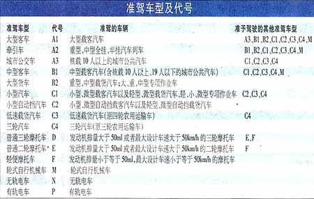 驾照将分15个级别 旧驾照可继续使用(图)