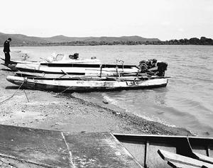 乌苏里江渔业资源堪忧 一网只捞上两条小鱼