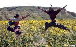 《七剑下天山》向日葵地中拍摄武打戏(组图)