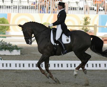 图文:马术荷兰选手获盛装舞步个人赛冠军