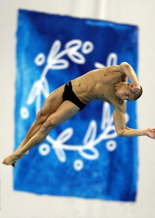 图文:跳水10米台预赛