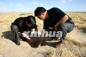 绿洲变沙源 民勤要变成第二个罗布泊?