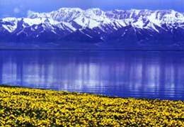 新疆最大最美的高山湖泊赛里木湖