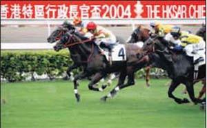 内地投注香港赛马属于违法