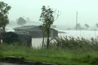 暴雨淹了长乐金峰旧街3公里(组图)