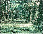穿越喀斯特森林的千年古道(图)