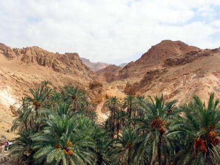 图文:突尼斯的撒哈拉大漠风情(8)