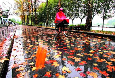 幼儿园秋雨画画
