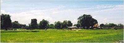 20040616_8.jpg