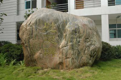 新闻频道 综合 海峡都市报    本报讯 武汉大学实验动物中心前日立碑