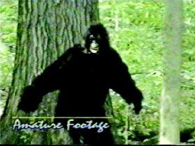 """19岁女孩被森林""""野人""""逼迫做性奴(图)图片"""