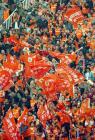 图文:山东平深圳 球迷为主队加油