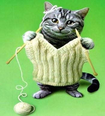 [奇趣]给自己打件毛衣