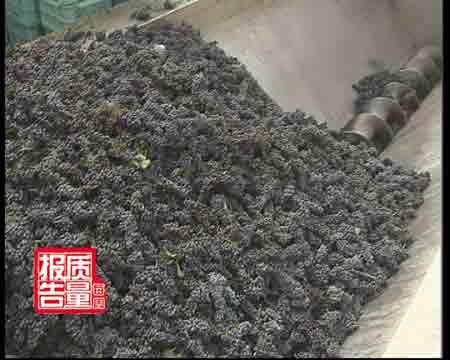 探查葡萄酒:酿酒不洗葡萄皮放神秘添加剂(图)