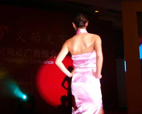 图文:山东卫视举办2005年广告经营推介会-29