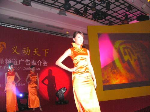 图文:山东卫视举办2005年广告经营推介会-12