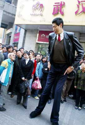 living chinese giants taller than yao ming