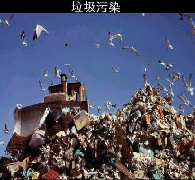 我国农村固体废物污染防治纳入法律管理范围