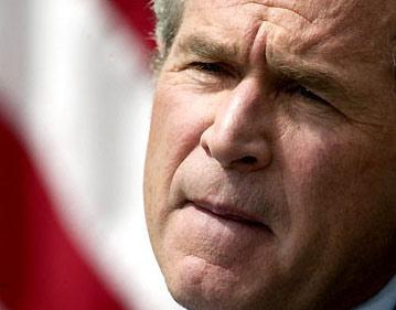 布什发表广播讲话