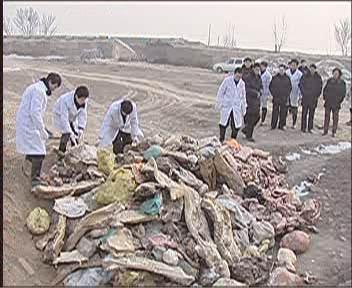 每周质量报告:平遥病死猪祸害四省区