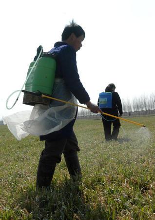 郑州,2005年3月8日春来农事忙    3月7日,河南省西平县盆尧乡陈老庄