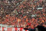 图文:鲁能胜国际主场开门红 山东主场爆满