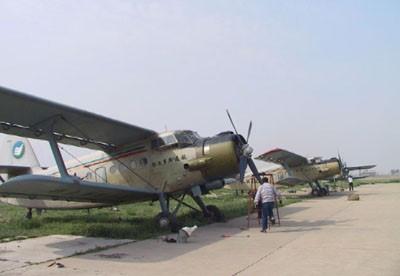 购买10架飞机治理沙漠