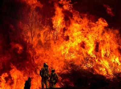 新闻频道 国际 美国加州森林大火肆虐 图片新闻