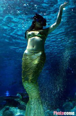 """组图:性感""""美人鱼""""在奇妙海底世界尽情畅游"""
