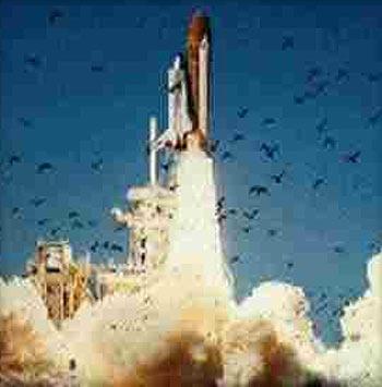 资料图片:美国挑战者号航天飞机发射升空瞬间